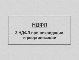 ndfl_licv_cover