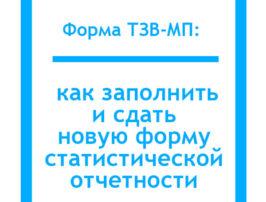 Форма-ТЗВ-МП