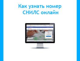 Как-узнать-номер-СНИЛС-онлайн