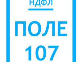 заполняем-поле-107-ндфл