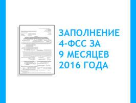 zapolnenie-4-fss-za-9-mesyacev-2016-goda