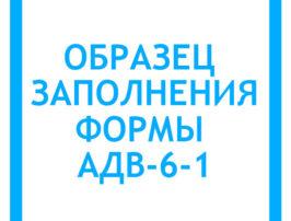 obrazec-zapolneniya-adv-6-1