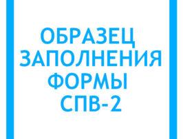 obrazec-zapolneniya-formy-spv-2