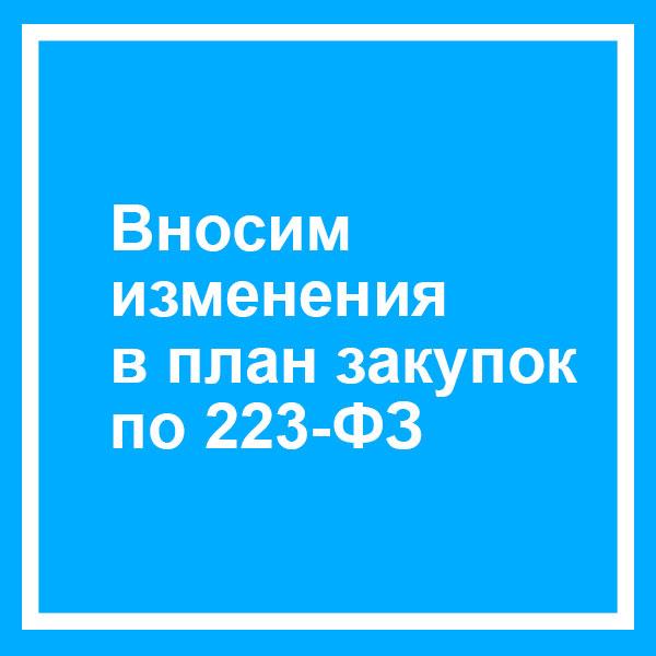 Срок размещения извещения по 223 после опубликовании плана закупок