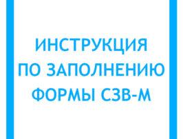 instrukciya-po-zapolneniyu-formy-szv-m