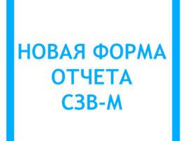 novaya-forma-otcheta-szv-m-s-2017-goda