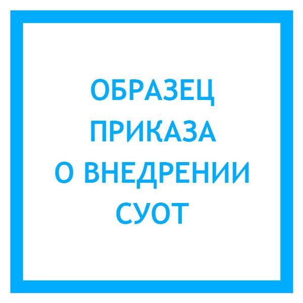 Положение о системе управления охраной труда в организации 2017.