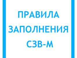 pravila-zapolneniya-szv-m