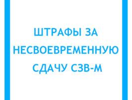 shtrafy-za-nesvoevremennuyu-sdachu-szv-m-20