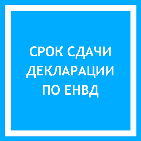 srok-sdachi-deklaracii-po-envd