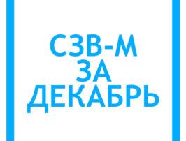 szv-m-za-dekabr