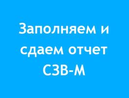 zapolnyaem-i-sdaem-otchet-szv-m-za-noyabr