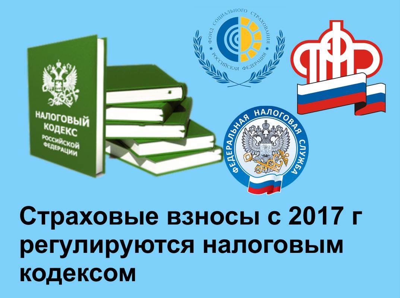 Налоговый кодекс 2017 уполномоченный представитель