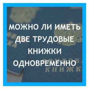mozhno-li-imet-dve-trudovye-knizhki-odn