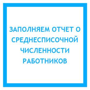 zapolnyaem-otchet-o-srednespisochnoy-chi