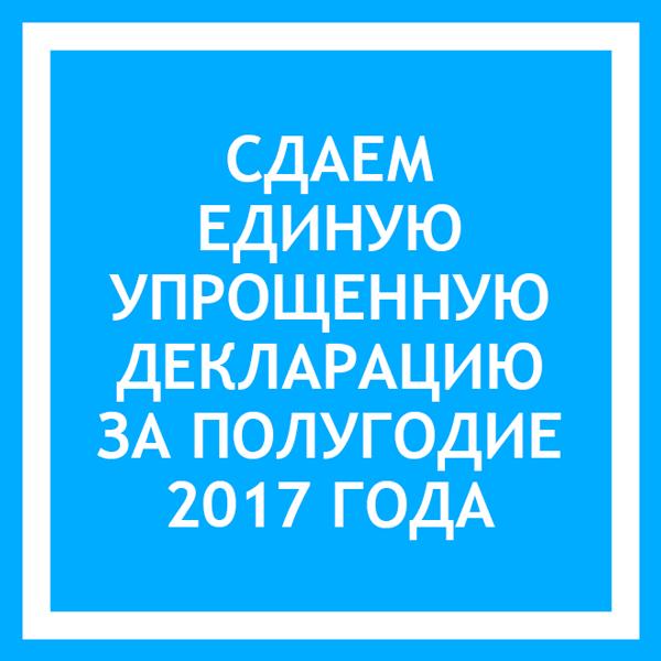упрощенная декларация 2019